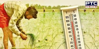 Heatwave conditions grip Delhi, other parts of North India