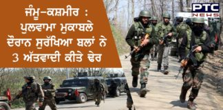 Jammu & Kashmir: 3 terrorists killed in encounter with security forces in Pulwama