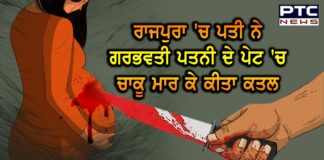 Man stabs pregnant wife to death in Rajpura