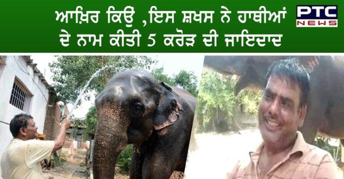 Elephants Name 5 crore Property byman in Bihar