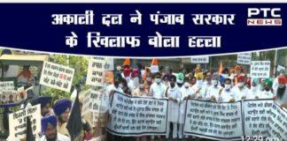Shiromani Akali Dal hold dharnas in Punjab | Punjab Bachao