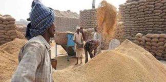 Deputy CM prepared master plan to prevent crop damage in mandi