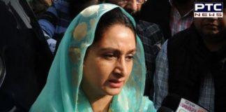 Punjab 18 Road Projects Approved: Harsimrat Kaur After Meeting Nitin gadkari