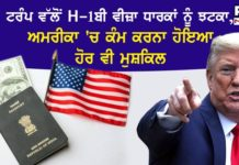 Trump no jobs to H-1B visa holders