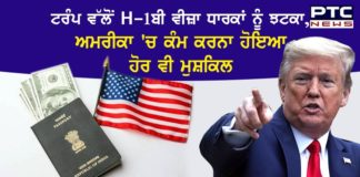 Trump no jobs to H-1B visa holders