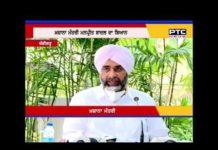 Captain Sarkar will follow the path suggested by Sukhbir Singh Badal