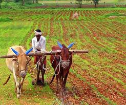 Congress Leader Bhupinder Singh Hooda on MSP Increase