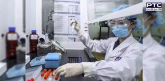 China coronavirus vaccine may be ready for the public in November