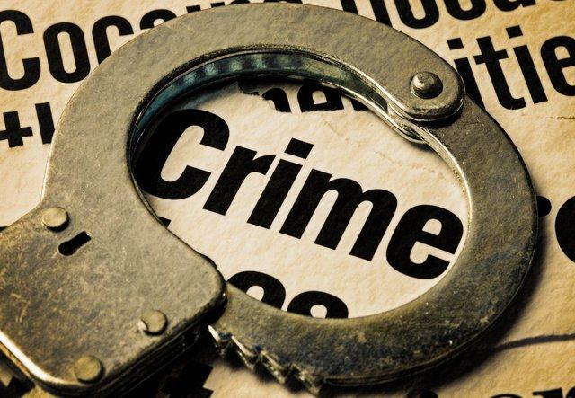 Over 14 Quintals Doda Post seized, 6 held Crime News Haryana