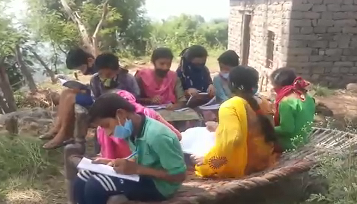 Poor Internet connectivity forced students to climb trees to study online (2)