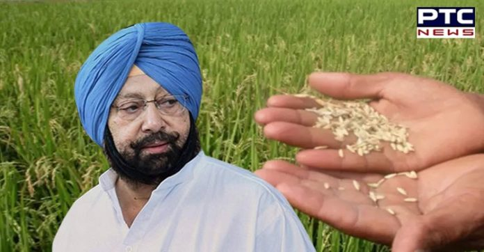 Punjab CM announces reduction in market and rural development fee for basmati