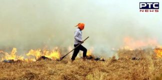Captain Amarinder Singh sets up dedicated call centre team to check stubble burning