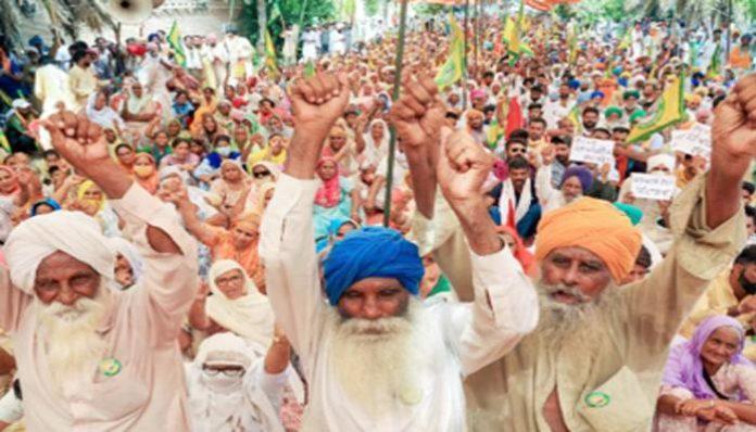 Why Punjab Haryana Farmers Opposing Farmer Bills (1)