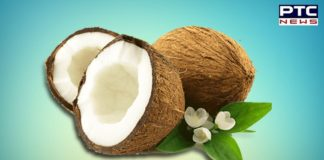 Lets know the benefits of Coconut on World Coconut Day 2020