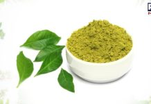 Know the health benefits of consuming Curry Leaves