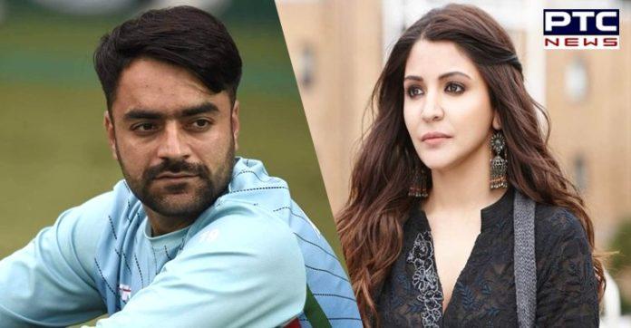 Anushka Sharma is Rashid Khan's wife, shows Google search. Why?