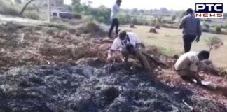 Temple priest burnt alive over land dispute, dies
