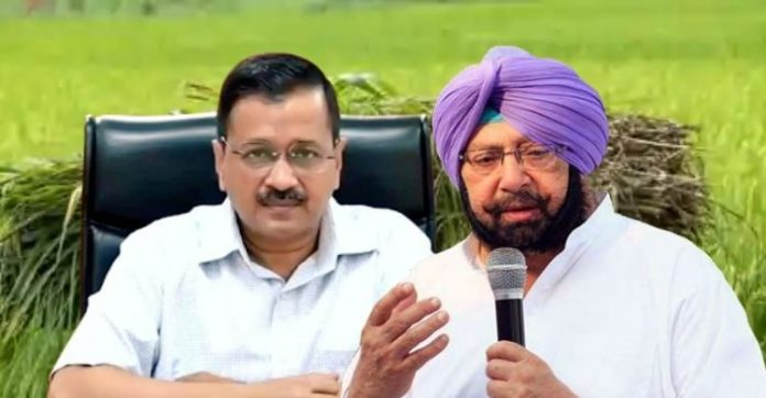 Captain Amarinder Singh dares Arvind Kejriwal to be in his limits of decency