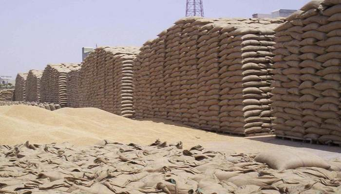 Farmers from outside states will also be able to sell paddy in Haryana (2)