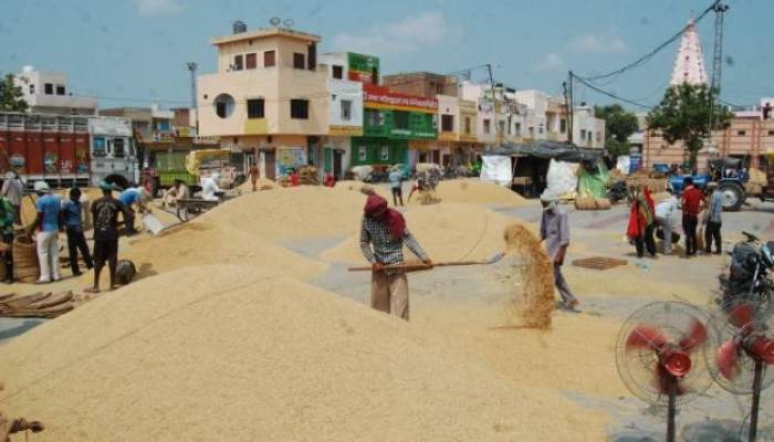 Government has complete eye on those who sell crops illegally