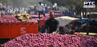 Government partially eases the restriction on export of onions