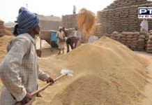 RBI extends CCL limit for Punjab paddy procuremen till Nov end