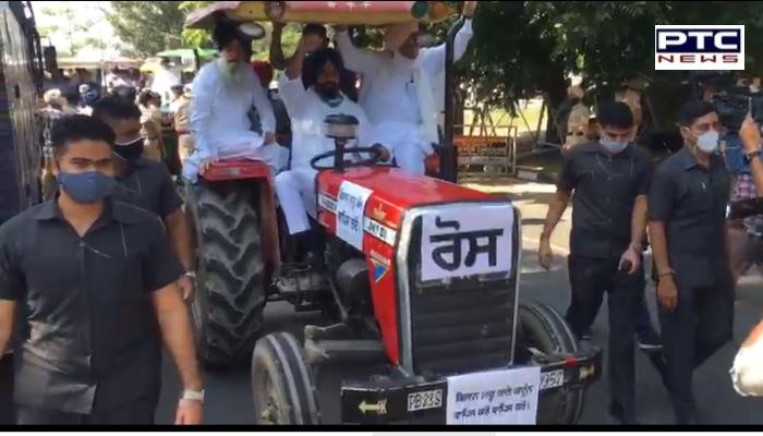 Punjab Vidhan Sabha's Special Session on Bill to Counter Farm Laws 2020: Shiromani Akali Dal MLAs-led by Bikram Majithia tried to enter.