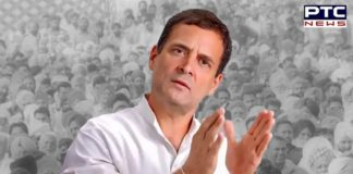 """Congress leader Rahul Gandhi said that he was """"ready to work for the party as all desire"""", Congress leader Pawan Bansal said."""
