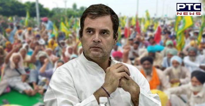 Rahul Gandhi vows to force Centre to revoke black farm laws
