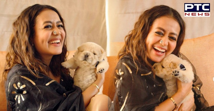 In a goodwill gesture towards Chandigarh-based Pulkit Vamp, Neha Kakkar hosted his beautiful dog Chow Chow for week days before her wedding.