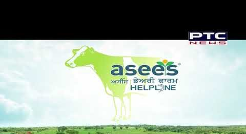 Asees Dairy farming