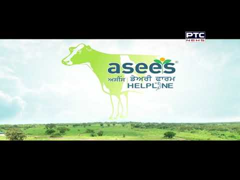 Asees Dairy Farm Helpline | 3 month old baby, 3 times the weight