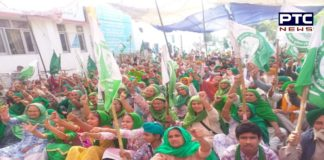 30 farmers' organizations continue to protest against agriculture laws on 48th day