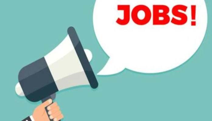 Jobs in Himachal