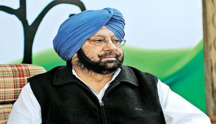 AAP Leader on Punjab CM