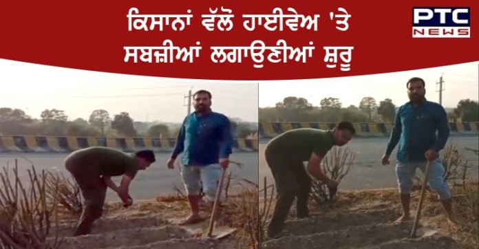 Farmers started planting vegetables on the highway in Delhi Morcha