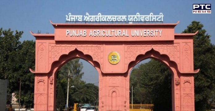 Punjab CM congratulates PAU for no. 2 ICAR ranking among agriculture universities