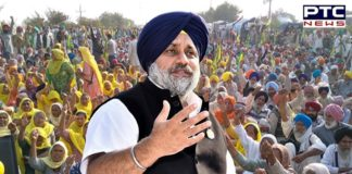 Shiromani Akali Dal (SAD) President Sukhbir Singh Badal announced party would contest the forthcoming municipal elections.