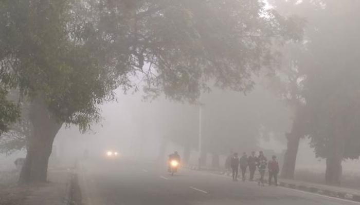 IMD Weather Forecast: The Indian Meteorological Department predicted weather for Punjab, Haryana, Chandigarh, and Delhi in the next two days.