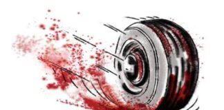 Fall in Road Accidents