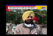 Akali Dal announces candidates for Municipal Council elections