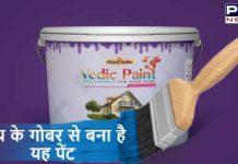 Khadi India Paint