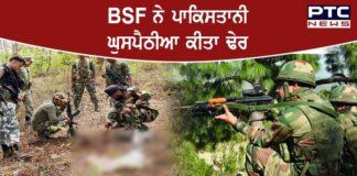 BSF shoots dead Pakistani intruder along International Border in Punjab's Amritsar