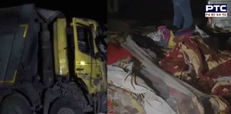 15 killed, 6 injured after being run over by truck in Gujarat's Surat