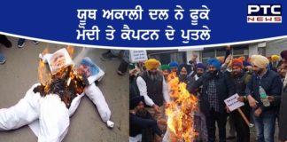 Youth Akali Dal protests in favor of farmers in Punjab , Fuke Modi and Punjab CM effigy