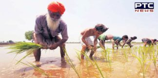 200 farmers from Madhya Pradesh allegedly duped with contract farming