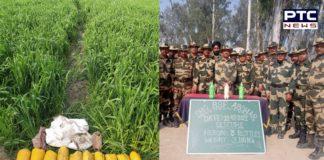 BSF recovers 10 kg heroin near India-Pakistan international border