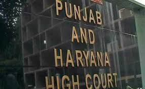 Punjab Municipal Election : High Court's important decision, candidates will be able to make videography themselves