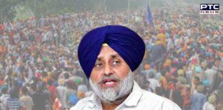Punjab Municipal Election 2021 result: Sukhbir Singh Badal thanks SAD warriors