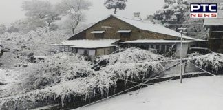Himachal Pradesh: Kasauli, Dagshai receive season's first snowfall